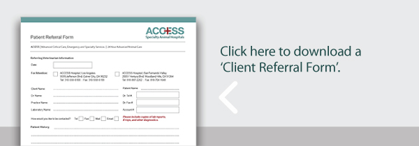 Referral-form-ws