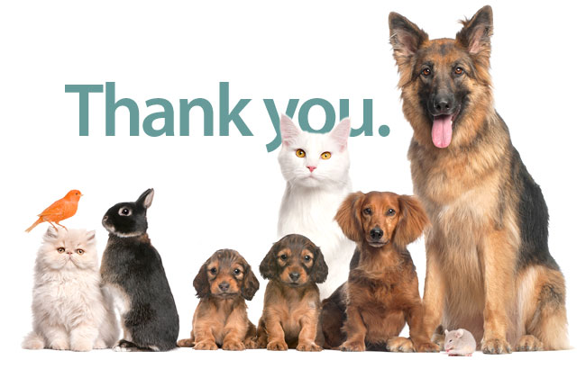 ACCESS-Animal-Hospital-thank-you