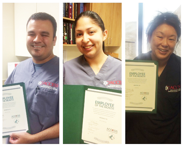 Employees of the Month - January-February-March