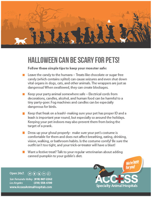 ACCESS-Halloween-pet-tips-English