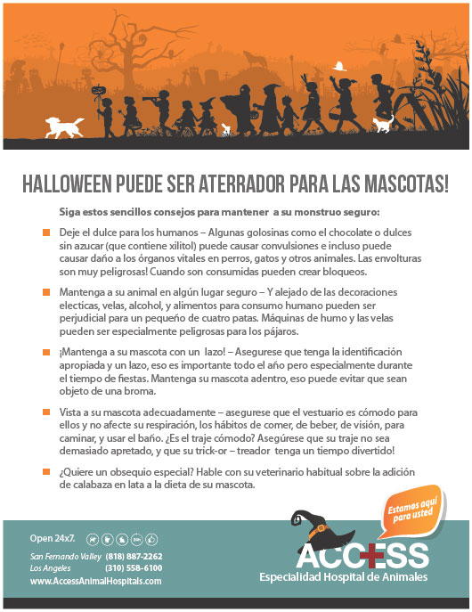 ACCESS-Halloween-pet-tips-Spanish