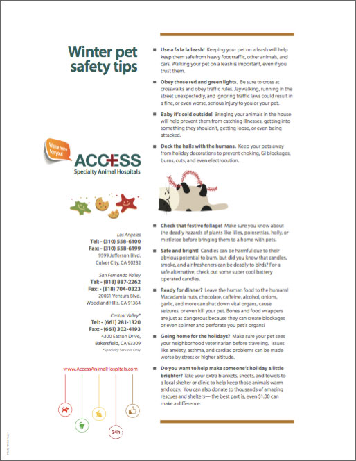 ACCESS-Safety-Tips-E