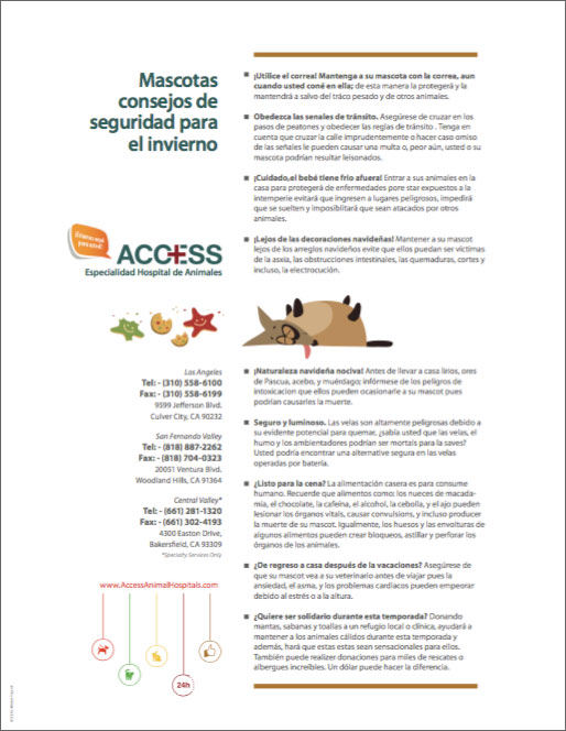 ACCESS-Safety-Tips-S