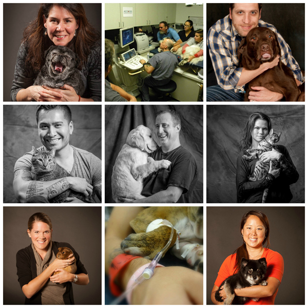 loveyourpetdaycollage