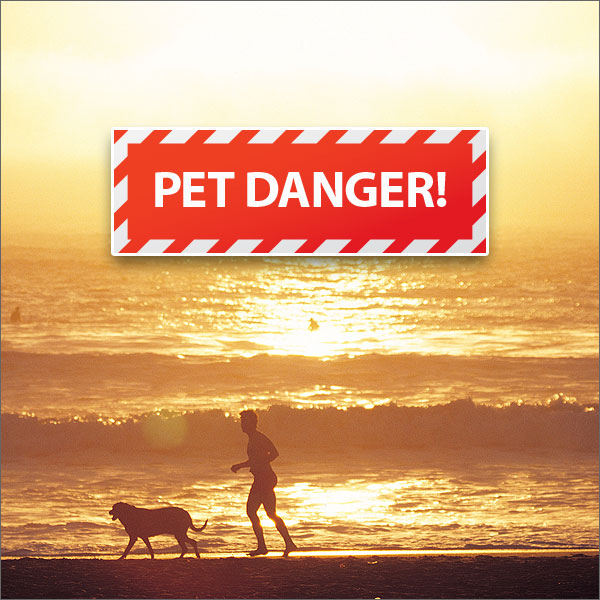 ACCESS-Heat-Danger-For-Animals