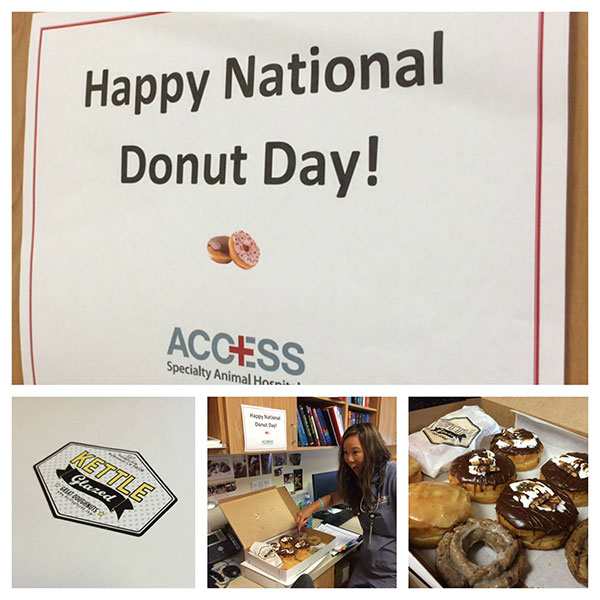 ACCESS-donut-day