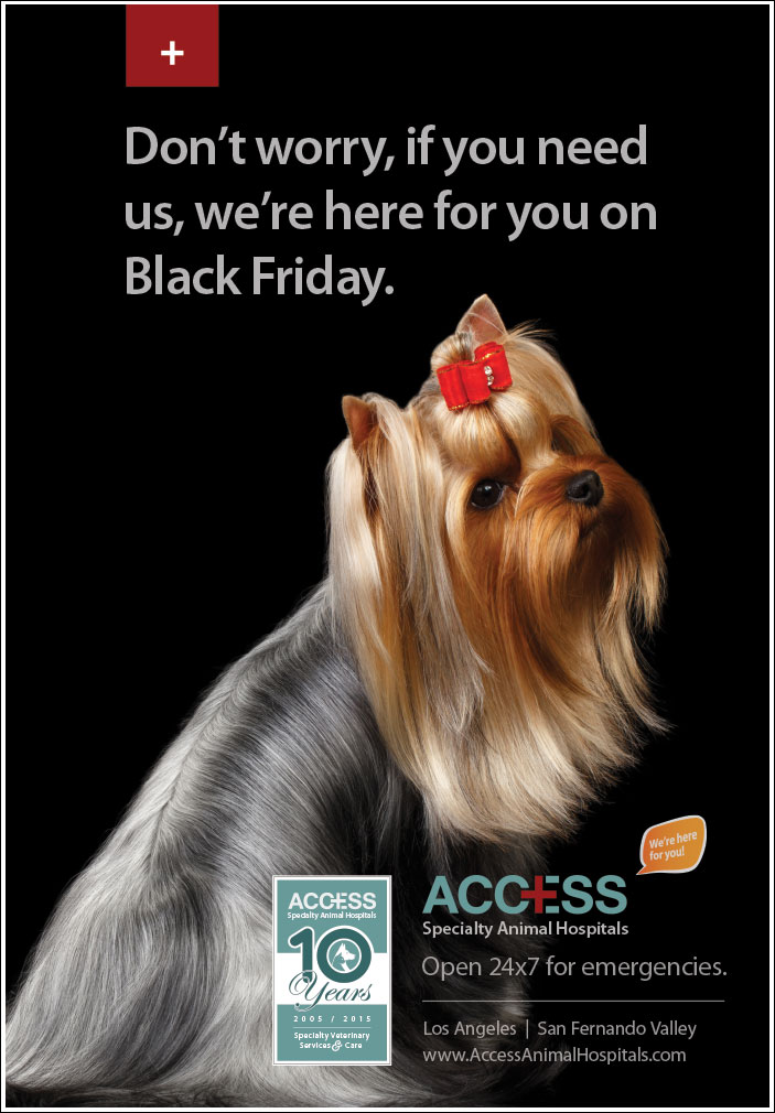 ACCESS-Black-Friday-'15-v1