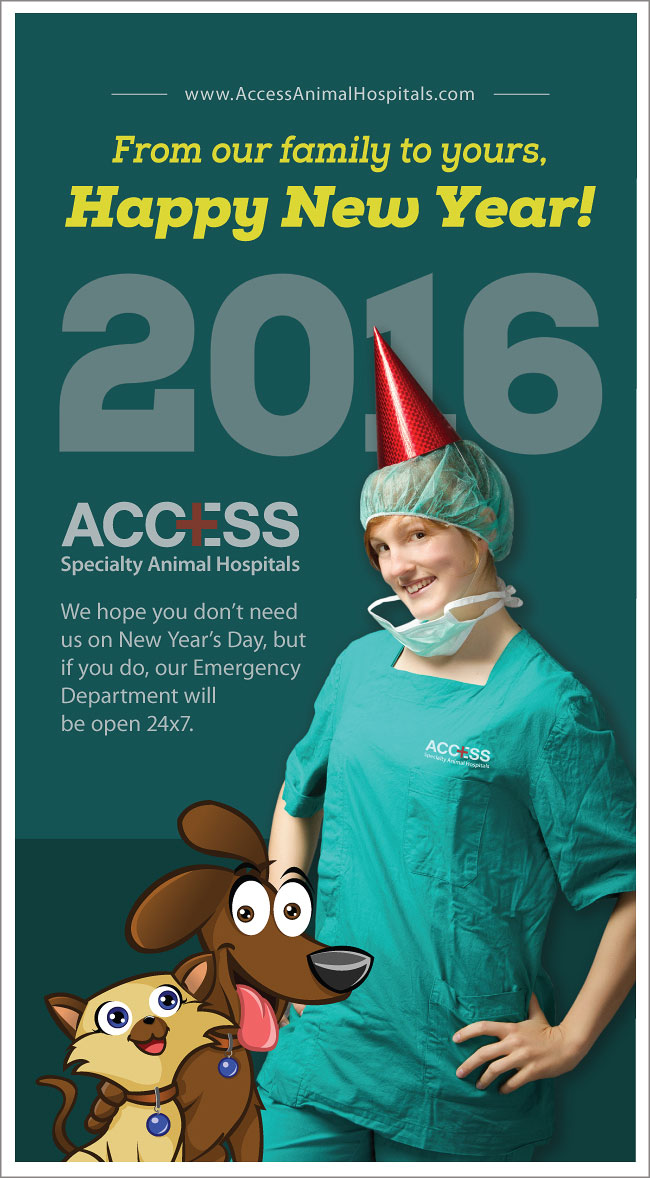 ACCESS-Happy-New-Year-2016