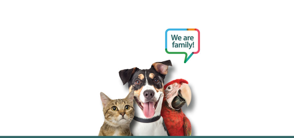 ACCESS-Specialty-Animal-Hospitals-we-are-family