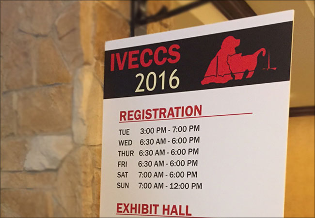 iveccs-conference-texas-b
