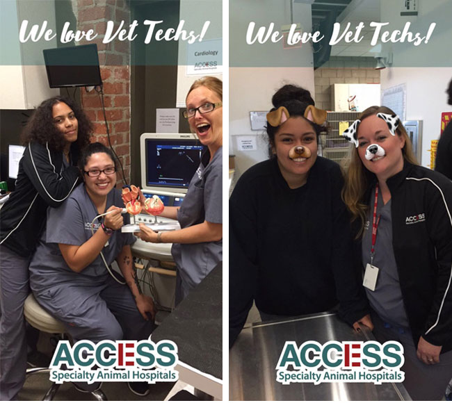 access-tech-week-2016-b